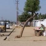 Indien 2010